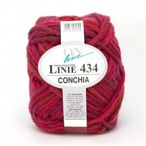 online_ONline_Linie_434_Conchia_knäuel