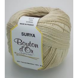 bouton_Bouton_d_Or_Surya_1025