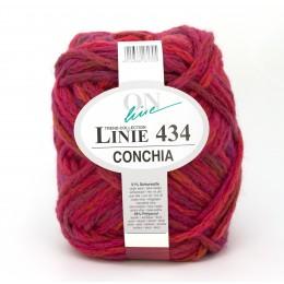 ONline Linie 434 Conchia