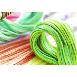 dmc_DMC_DMC_Color_Variations_Stickgarn_green